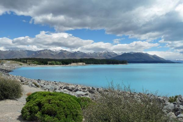 New Zealand - Lake Pukaki